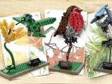 lego-21301-birds-ideas-2