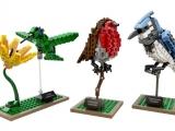lego-21301-birds-ideas-3
