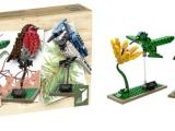 lego-21301-birds-ideas-4